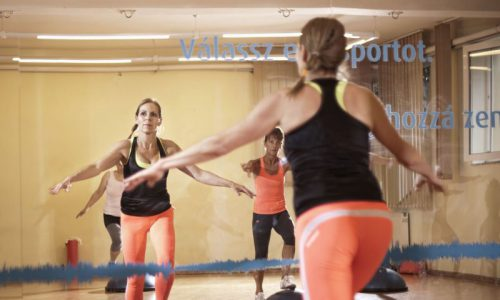 hotelmakar-bosu-aerobic-pecs